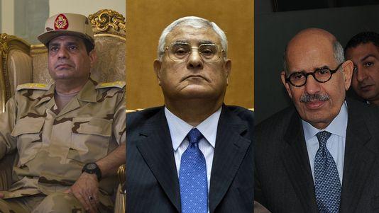 Al-Sissi, Mansour, ElBaradei
