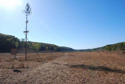 Zone déboisée pour la construction du barrage