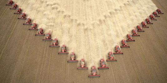 1164703_3_92b8_des-agriculteurs-recoltent-du-soja-destine-a_70e2eafccd44021d3a38d72a111cc365