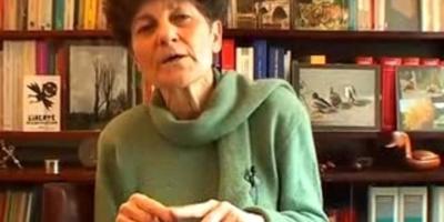 Danièle Lochak, professeur émérite de droit public  à l'Université Paris Ouest (Nanterre-La Défense)  et ex-présidente du GISTI (Groupe d'information  et de soutien aux immigrés)