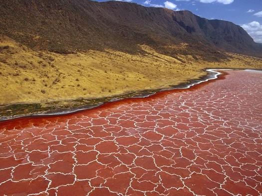 Quand la société WJ Cairns & Associates teste, en essayant d'intégrer des ONG, la faisabilité de l'extraction de minerais du lac Natron en Tanzanie... sans répercussions environnementales