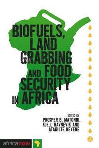 9781848138797_200x_biofuels-land-grabbing-and-food-security-in-africa