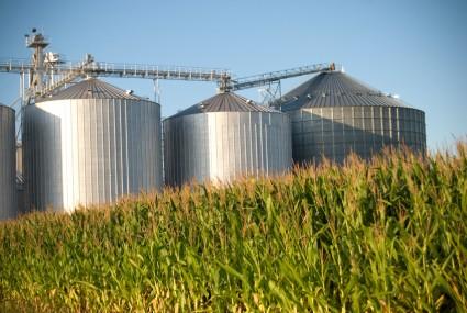 corn_industrial_ag_425