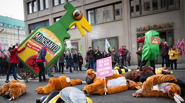 Monsanto19janv19