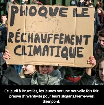 PhoqueBrux