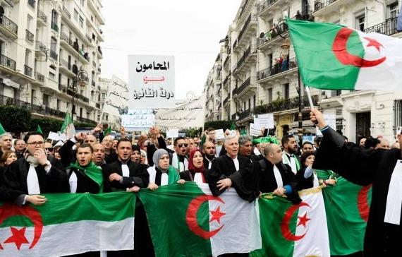 AlgerieAvocats