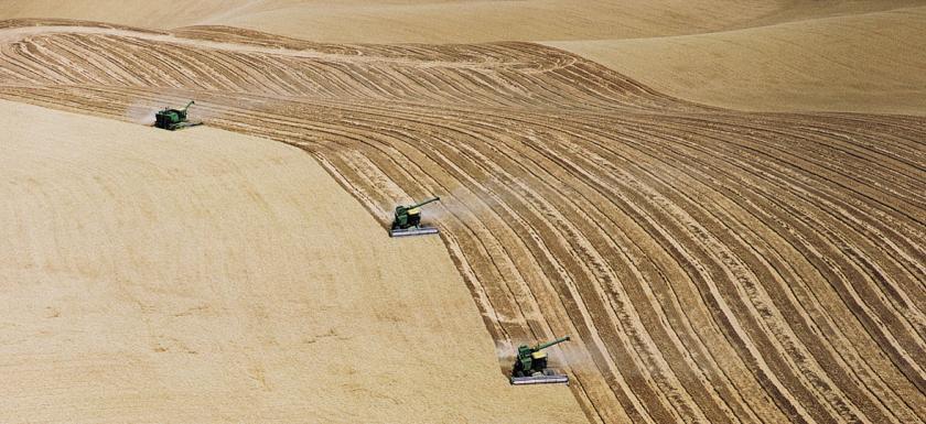 fa-industrial-monoculture-aerial-large