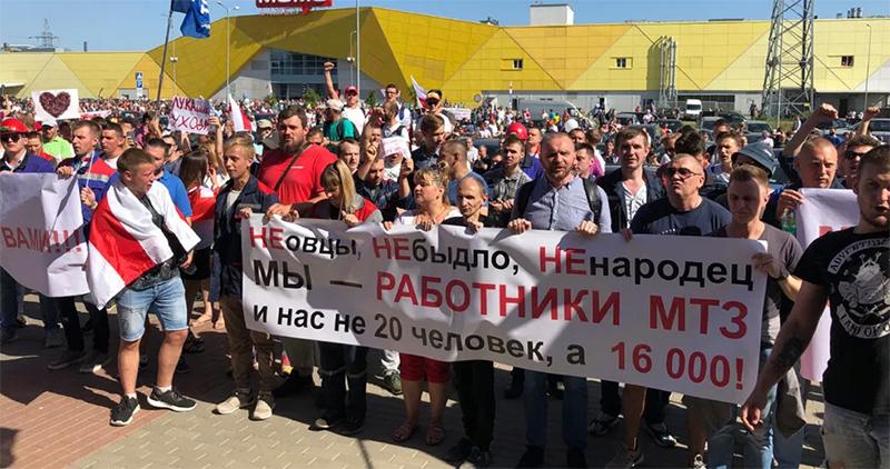 BielorussiePasMouton